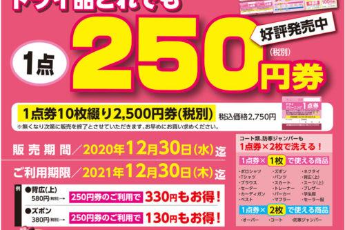 ドライ品1点250円券